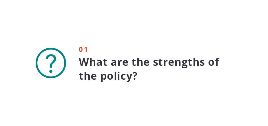 What are the strengths of the policy?