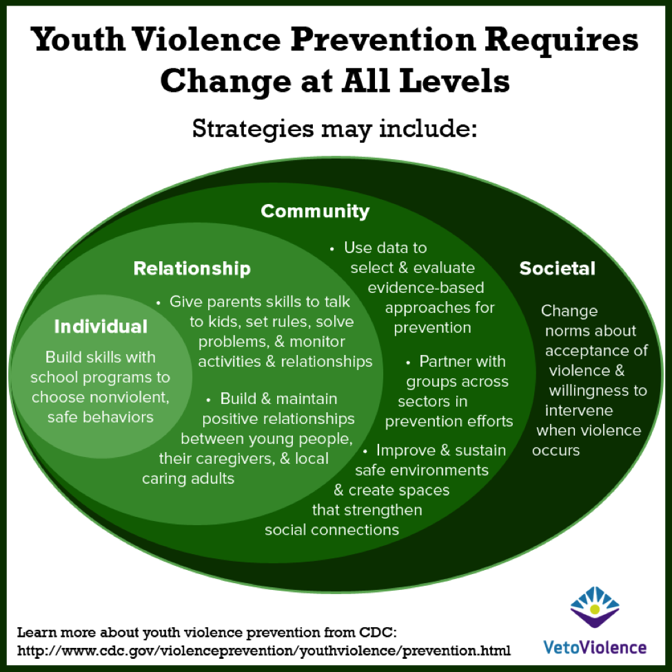 Youth Violence Prevention Requires Change at All Levels