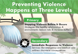 The Levels of Prevention