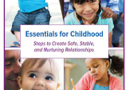 Essentials for Childhood Framework